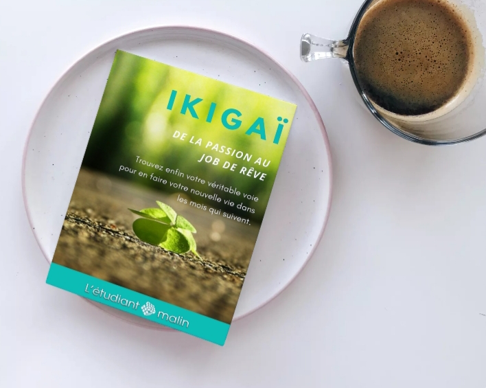 ikigai pdf gratuit
